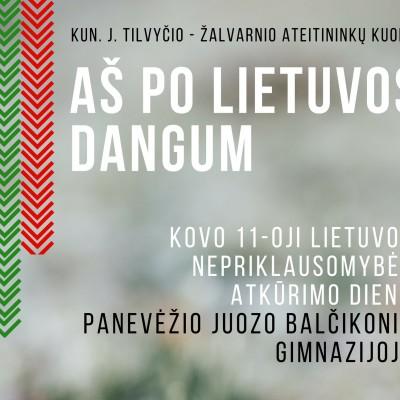 Aš po Lietuvos dangum (3)
