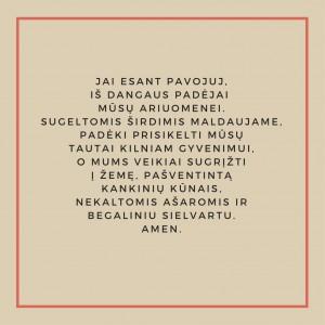 Dirstelk-1-13