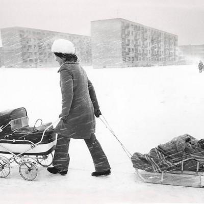 Zenonas Bulgakovas, 1972 m.
